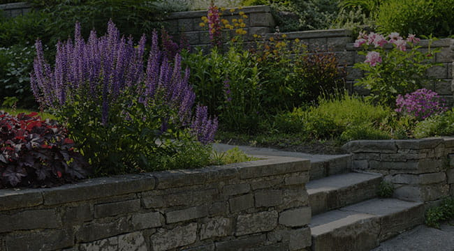 Los Angeles Hardscapes